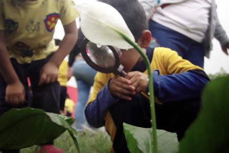 Laboratorio vivo para el aprendizaje: un actuar dinámico y contacto respetuoso con el ambiente